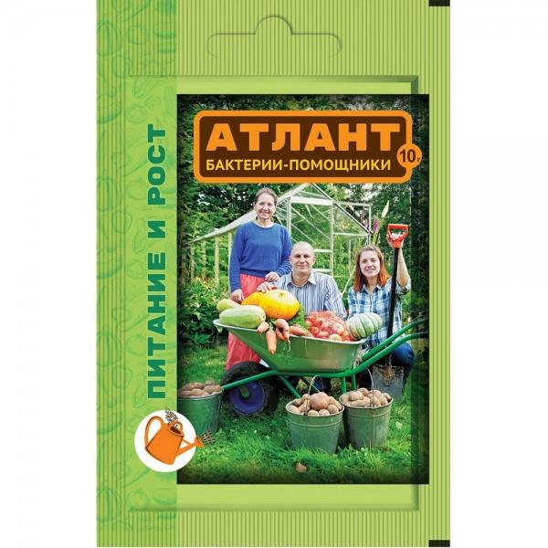 Атлант 10гр питание и рост ВХ
